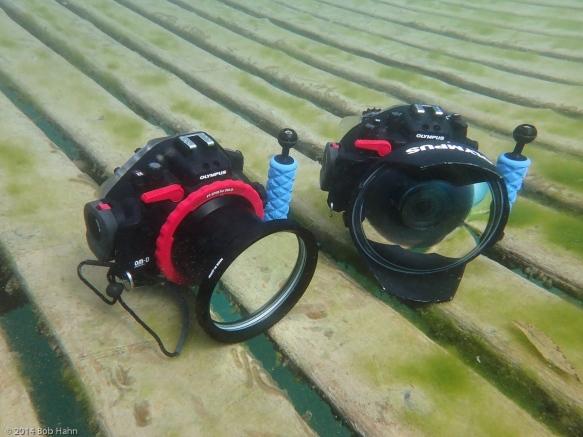 OM-D/E-M5, PPO-EP01 Lens Port, PT-EP08 Housing, OM-D/E-M1, PPO-E04 Lens Port, PT-EP08 Housing
